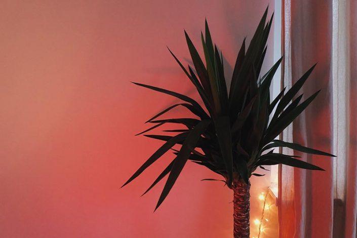 Salones modernos - Blog Pinturas Noroeste - StockSnap_MYRVU0SY24